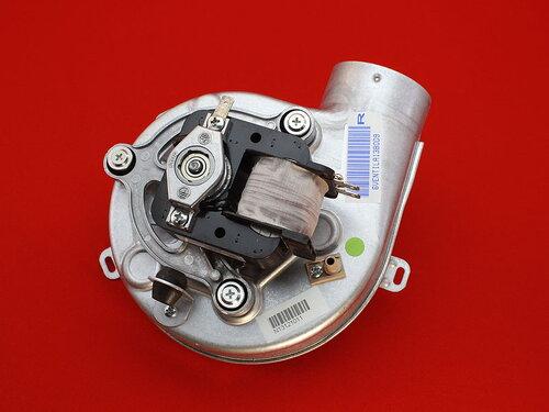 Купить Вентилятор Nova Florida, Fondital CTFS-RBTFS-BTFS 24 1 736 грн., фото